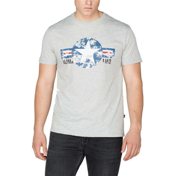 Alpha Industries  USAF T, grey heather 5XL