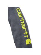 CARHARTT Midweight Signature Sleeve Logo Hooded Sweatshirt, anthrazit XS